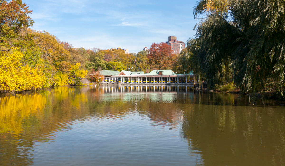 Fifth Avenue Neighborhood Central Park Restaurants In And
