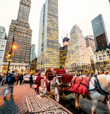 Horse carriage rides in Central Park